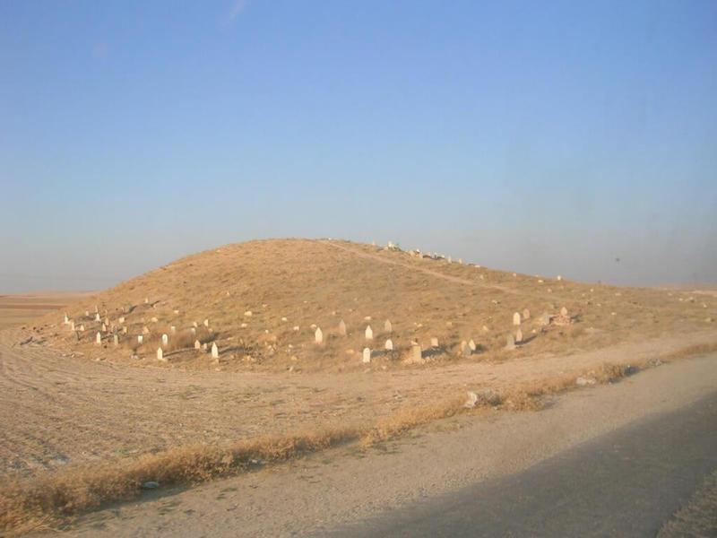 Figure 1 (copyright E. Cunliffe July 2010) shows the cemetery on the site of Mazala in Syria.  (Mazala is site LCP 11 in the Land of Carchemish Survey, carried out by Durham University).
