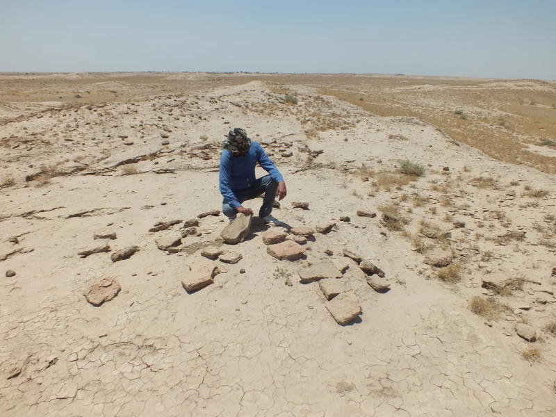 Evidence of looting at a distrubed site in ThiQar Province, Iraq.