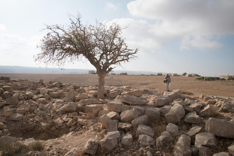 David Kennedy inspects the ruins of a large structure of well-dressed stone at Mesheirfeh. Photograph: Rebecca Banks.