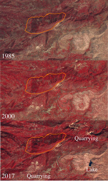 Figure 5: Three composite Landsat satellite images from 01-01-1985 to 01-01-1986 (L5, bands 4, 3 and 2), 01-01-2000 to 01-01-2001 (L7, bands 4, 3 and 2) and 01-01-2017 to 01-01-2018 (L8, bands 5, 4 and 3), generated using Google Earth Engine (script by Lo